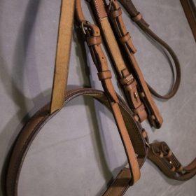 Bride et renne cheval en cuir